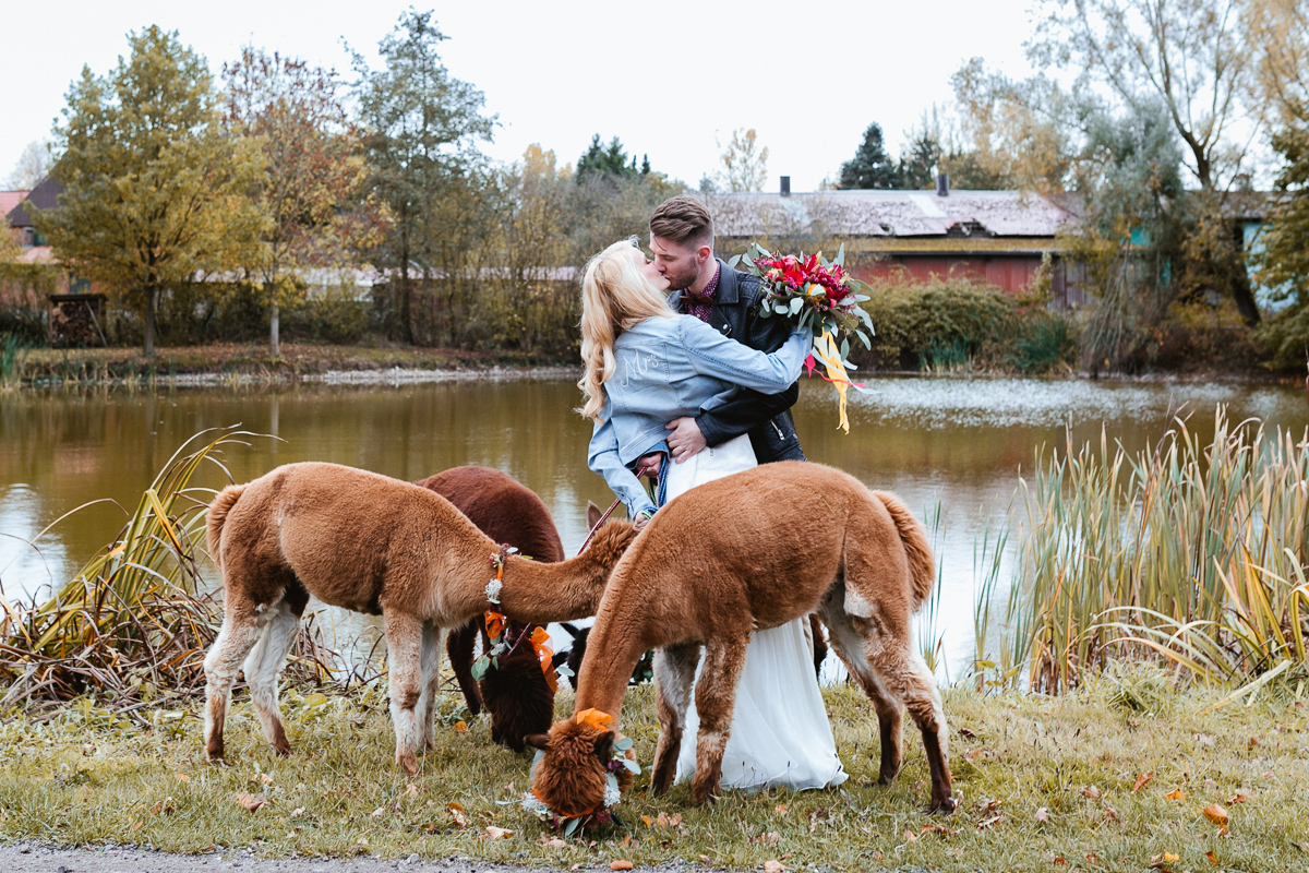 Wedding Circus mit Alpaka am See